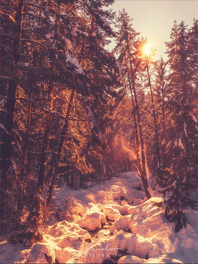 Winter sunset river print