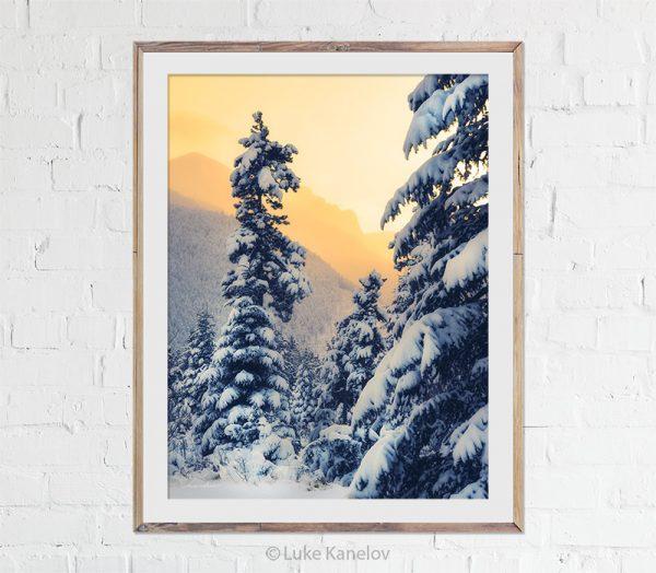 Winter landscape winter sunset
